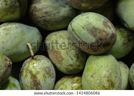 Fresh manggo freshly picked from the tree #1414806086