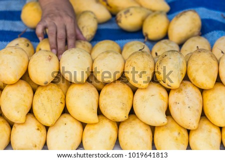 Mango crate  Images and Stock Photos - Page: 6 - Avopix com