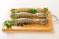 fresh mantis shrimp with lemon on wood board