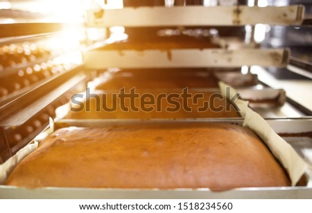 Fresh Manufactured Large Pies in Production for Cakes and Sweet Baking, copy space