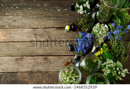 Fresh medicinal herbs. Medicinal herbs (chamomile, wormwood, yarrow, mint, St. John's wort and chicory) on an old wooden board. View from above. Copy space #1468352939