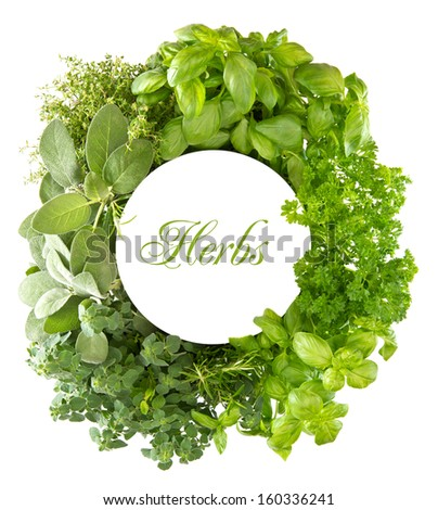 fresh mediterranean herbs and spices over white background with space for your text with sample text HERBS. healthy cooking concept