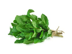 Fresh mint bunch isolated on white background. Spices and medicinal herbs concept.