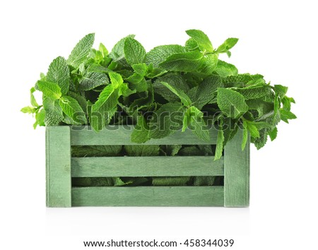 Fresh mint in wooden box, isolated on white #458344039