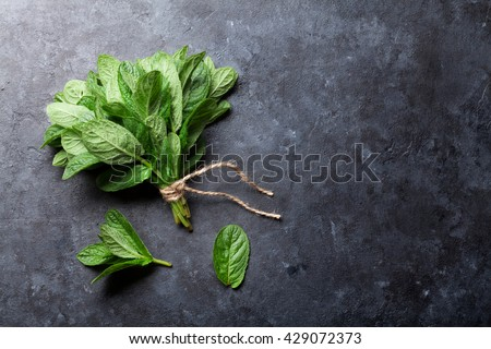 Fresh mint leaves herb on stone table. Top view with copy space #429072373