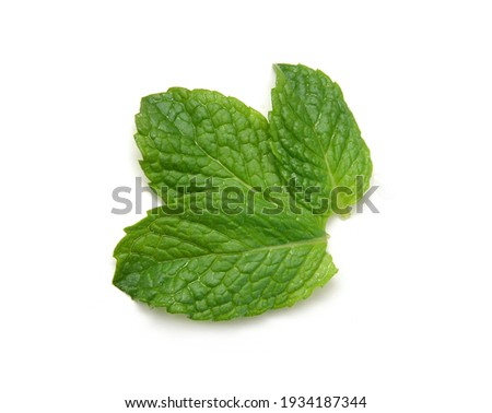Fresh mint leaves isolated on white background. Foto stock ©
