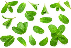 Fresh mint leaves isolated on white background. top view