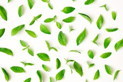 Fresh mint leaves pattern, top view