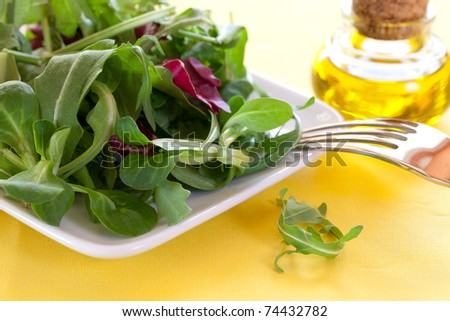 fresh mixed salad on a plate