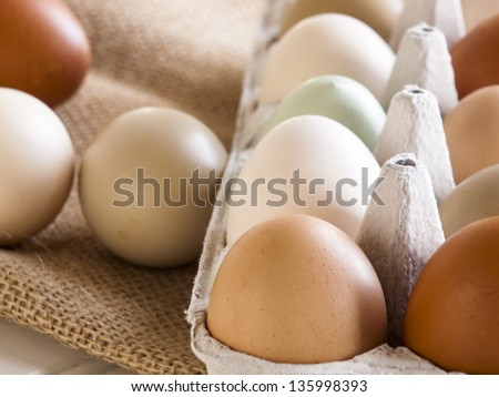 Fresh multi-color farm eggs on the table.