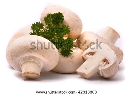 Fresh mushrooms isolated on a white background