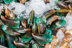 Fresh mussels on ice in the market