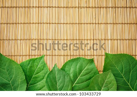 Fresh Natural Green Leaves Border or Frame on a Bamboo Mat Background
