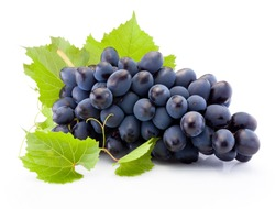 Fresh of blue grapes with leaves isolated on white background