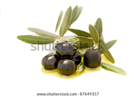 fresh olives on the olive branch isolated on white background