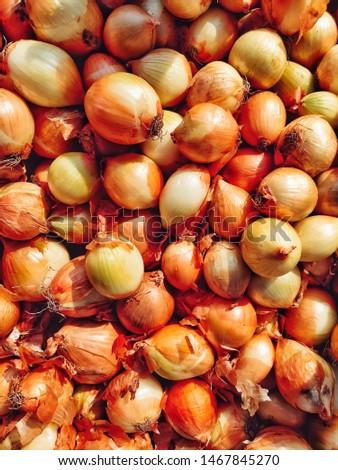 Fresh onions. Onions background. Ripe onions. Onions in market #1467845270