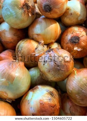 Fresh onions. Onions background. Ripe onions. Onions in market #1504605722