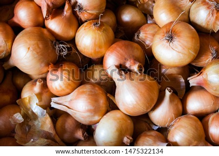 Fresh onions. Onions background. Ripe onions. Onions on the market  #1475322134