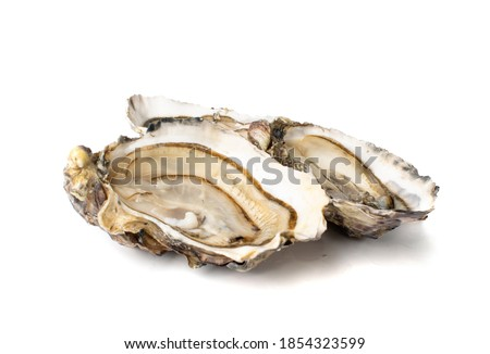 Fresh opened oyster half isolated on white background. Raw french oysters mollusc, shellfish or mussel closeup Stockfoto ©