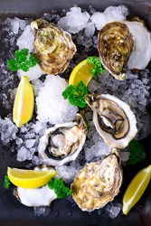 Fresh opened oysters, lemon, herbs, ice on dark metal background. Top view, copy space