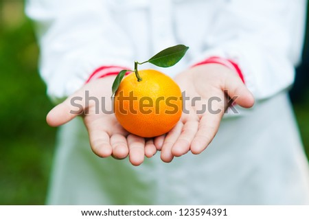 Fresh orange on hand 03