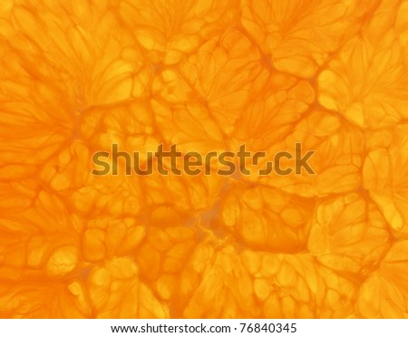 Fresh Orange slice close up (See my portfolio for more)