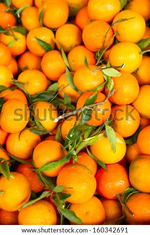 Fresh oranges in the basket