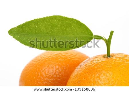 Fresh oranges with leaf
