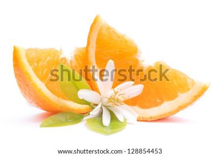 Fresh oranges with orange blossom