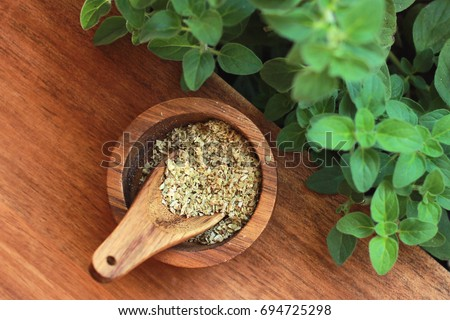 fresh oregano leaves and oregano spice #694725298
