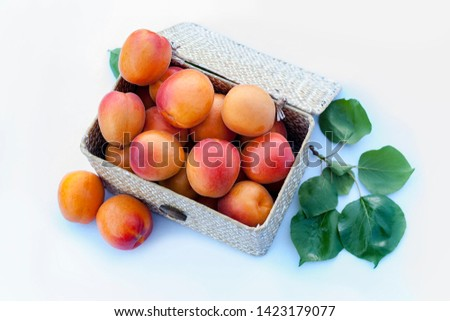 Fresh organic apricots in a natural fiber box on white background with leaves. Variety: galta roja, bulida. Other varieties: canino, Nancy, currot, Beta carotene and vitamins. Low calories food.