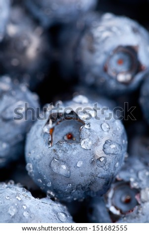 Fresh organic blueberries close up with selective focus and water droplets