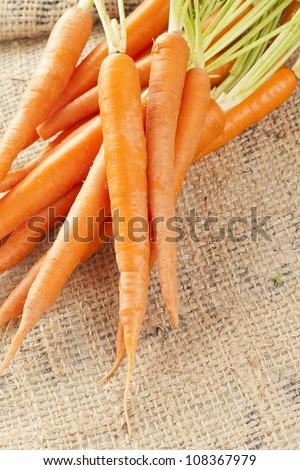 Fresh Organic Carrots against a back ground