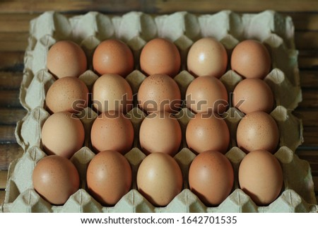 fresh organic chicken eggs in protective paper pulp tray