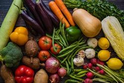 Fresh organic group of vegetables
