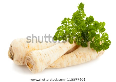 Fresh organic parsley root with parsley on white background