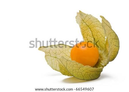 Fresh organic physalis (cape gooseberry) over white background