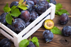 Fresh organic plums in the crate