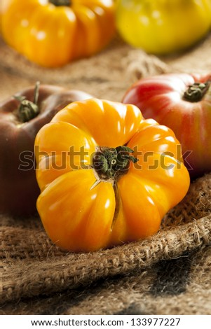 Fresh Organic Ripe Heirloom Tomatoes in a variety of colors