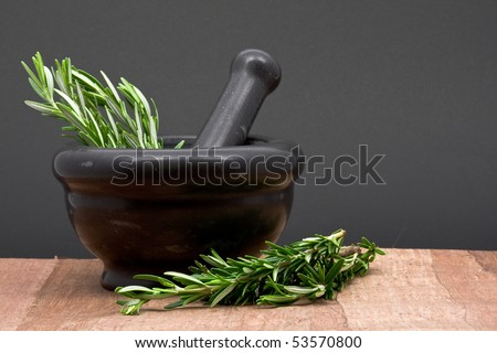 Fresh organic rosemary with mortar and pestle