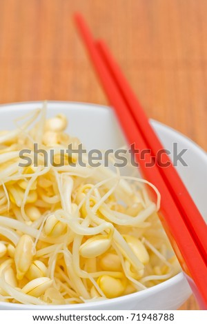 Fresh organic soy bean sprouts in bowl