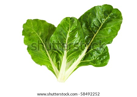 Fresh organic Swiss chard with clipping path