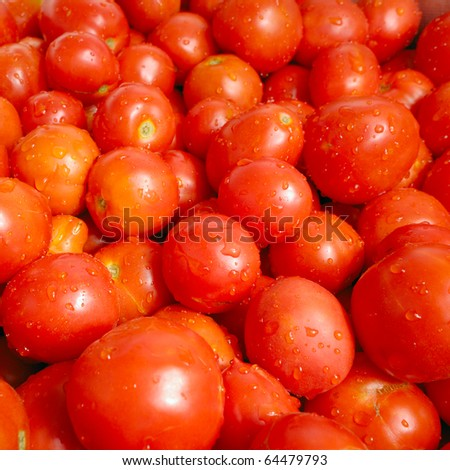 Fresh organic tomatoes ready for juice making