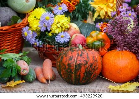Fresh organic vegetables - pumpkin, zucchini, carrot, cucumber, bell pepper, apples. Autumn. Harvest. Selective focus #493229920
