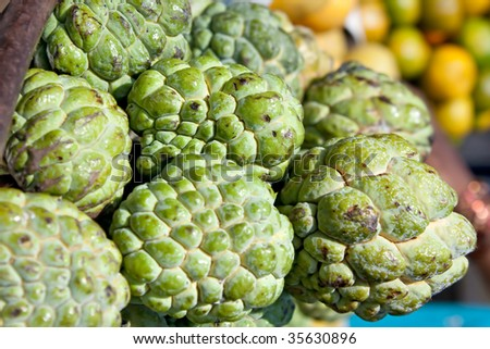 Fresh organic white bulb  Custard Apple for sale at a market for farm products, India