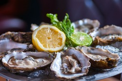 Fresh oyster in dish with lemon and lime