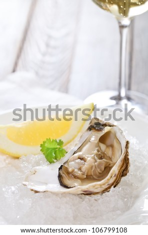 Fresh oyster platter served in ice with white wine