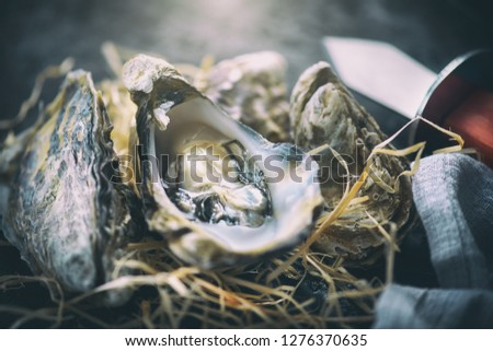 Fresh Oysters close-up with knife, served table with oysters. Healthy sea food. Oyster dinner in restaurant. Gourmet food.