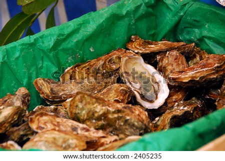 Fresh oysters for sale on a fish market