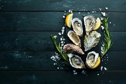 Fresh Oysters. Seafood. Top view. On a black background. Free copy space.